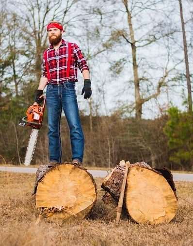 Best Professional Chainsaw Reviews This Year