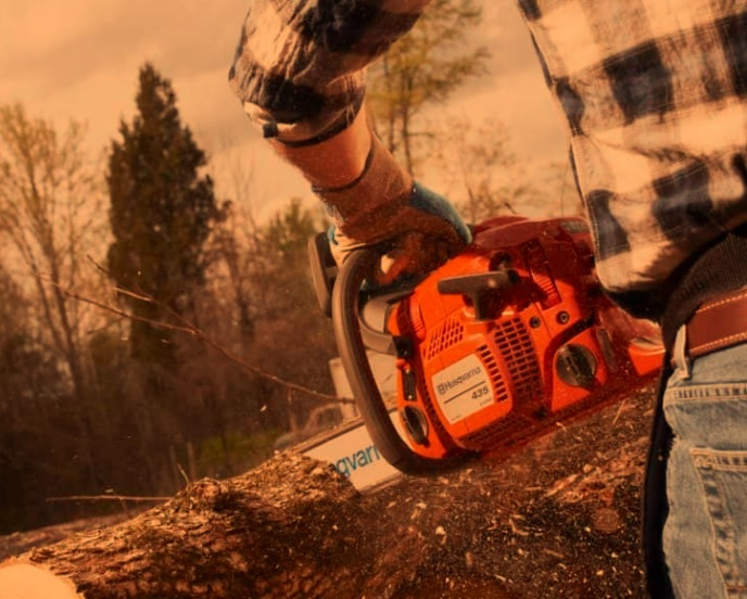 Best Professional Chainsaws On The Market